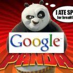 Ce-trebuie-sa-stii-despre-algoritmul-Panda